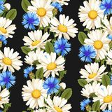 Meadow flowers seamless Royalty Free Stock Image