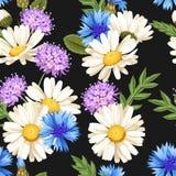 Meadow flowers seamless Stock Image