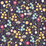 Meadow flowers seamless pattern Royalty Free Stock Photos