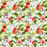 Meadow flowers, summer grasses, wild herbs. Repeating botanical pattern. Watercolor stock illustration
