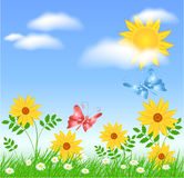 Meadow flowers and sun. Meadow flowers, sun, clouds and butterflies Royalty Free Stock Photos
