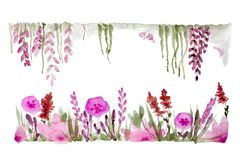 Meadow Flowers In Watercolor Stock Images
