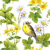 Meadow flowers, wild grass, bird. Floral repeating pattern. Watercolour Stock Photography