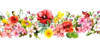 Meadow flowers, wild grasses and leaves. Repeating summer horizontal border. Floral watercolor stock illustration