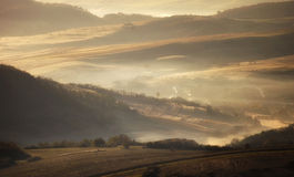 Meadow with fog rising on an autumn morning Stock Image