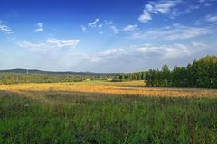 Meadow and forest against the blue sky with light white clouds stock photo