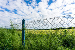 Meadow and forest behind the fence Royalty Free Stock Photos