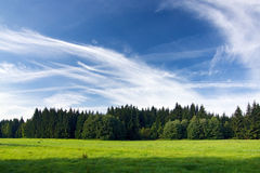 Meadow, forest and blue sky Stock Photo