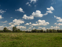 Meadow, forest and blue sky with clouds Royalty Free Stock Photography