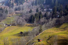 Early spring in the Austrian Alps. Stock Photography