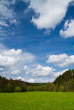 Meadow, forest and skies, Portrait orientation. Green meadow with trees in the background and sky above in the spring. Portrait orientation royalty free stock photography