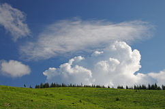 Meadow, forest and sky Royalty Free Stock Photography