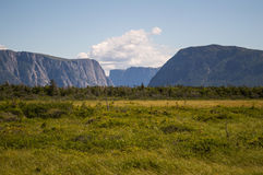 Meadow in Front of Western Brook Pond in Gros Morne National Park in Newfoundland Royalty Free Stock Photography
