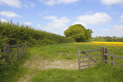 Meadow gate Stock Images