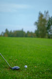Meadow golf field Royalty Free Stock Image