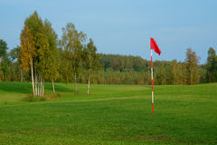 Meadow golf field Royalty Free Stock Images