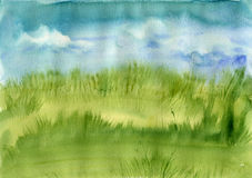 Meadow grass and blue sky Royalty Free Stock Photography