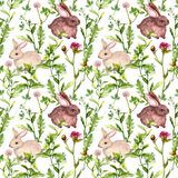 Meadow grass, flowers, rabbits. Seamless pattern. Watercolor Stock Image