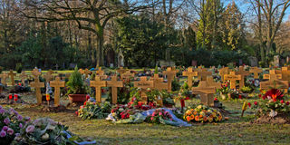 Meadow with graves with wooden crosses in `Melatenfriedhof` cemetery in Cologne, Germany Stock Images