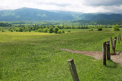 Meadow in Great Smoky Mountains Royalty Free Stock Photo