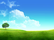 Meadow with a green young grass and the dark blue Royalty Free Stock Image