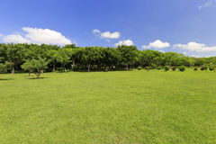 Meadow in gulangyu island Stock Photo
