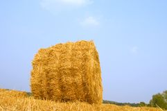 Meadow of hay bales Royalty Free Stock Photos