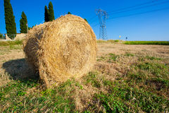 Meadow of hay bales in a late summer afternoon Stock Images
