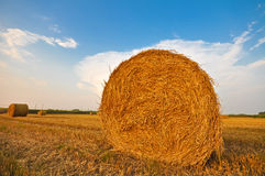 Meadow of hay bales in a late summer sunset Stock Images