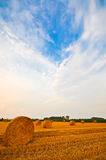 Meadow of hay bales in a late summer sunset Royalty Free Stock Image