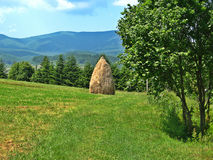 In the meadow haystack mountains in the background. Royalty Free Stock Photos