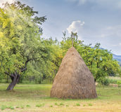 Meadow and Haystack Stock Images