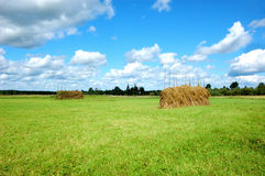 Meadow with haystacks and cloudy sky Royalty Free Stock Photo
