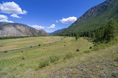 Meadow with haystacks in the mountains. Altai, Russia. Royalty Free Stock Photos