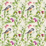 Meadow herbs, flowers, butterflies, birds. Repeated pattern. Water color. Meadow herbs, flowers, butterflies and cute birds. Repeated pattern. Water color Royalty Free Stock Photo
