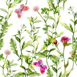 Meadow with herbs, flowers and butterflies. Seamless vintage watercolor pattern vector illustration