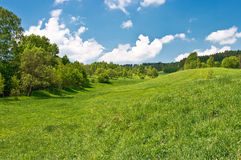Meadow in the hills Royalty Free Stock Photo
