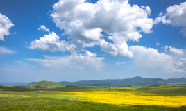 Meadow, hills and blue sky Royalty Free Stock Image