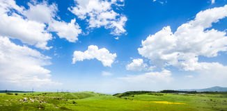 Meadow, hills and blue sky Stock Image