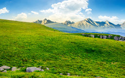 Meadow with huge stones on top of mountain range Stock Images