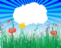 Meadow illustration Stock Photo