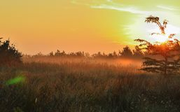 Free Meadow In The Fog, Dawn, Red Sun And Sky Royalty Free Stock Photo - 130158395