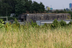 Meadow with industrial in the background Stock Photo