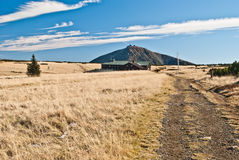 Meadow with isolated tree, Lucni bouda chalet and Snezka hill in Krkonose mountains Stock Images