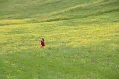 Meadow in Italy Stock Photography