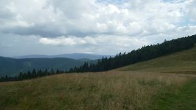 Meadow in the Jizera Mountains stock photo