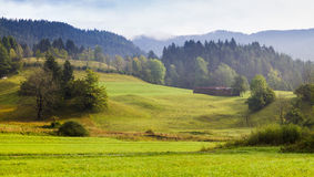 Meadow in the Julian Alps Stock Photography