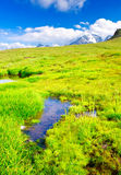 Meadow and lake. Green meadow and lake in valley. High mountains and blue sky Royalty Free Stock Photos
