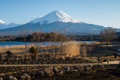 Meadow Lake and Mount Fuji. Meadow with lake and volcano Fuji on bright sky Stock Photography