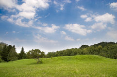 Meadow landscape Royalty Free Stock Images